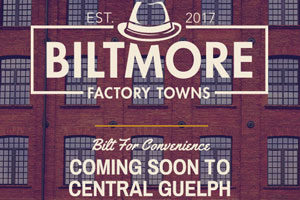 Biltmore Factory Towns